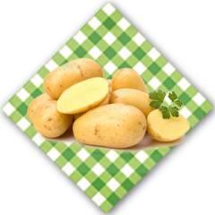 重庆巫溪     高山土豆   5斤