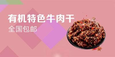 【郵政扶貧】新疆托里有機特色牛肉干 50g/袋 香辣味 全國包郵