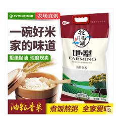牧馬湖2018年新米嘗鮮地犁油粘米5kg長粒香米包郵